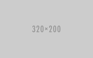 320 x 200